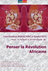 Penser la Révolution Africaine